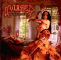 AVULSED: Gorespattered Suicide
